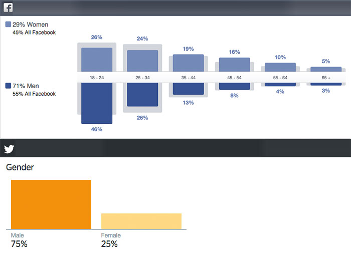 Facebook and Twitter Audience Insights showing the gender and age makeup of the community
